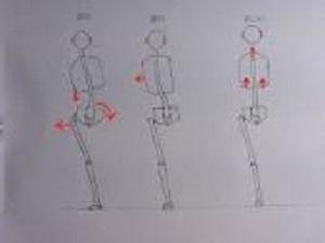 肋骨3.jpg